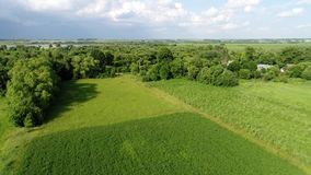 Rural landscape in June in central Russia. Rural landscape in June in a central Russia stock footage