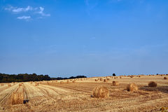 Rural landscape with large round bales after harvest Royalty Free Stock Photography