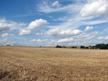 Rural landscape. In mid summer on a sunny day Stock Photos