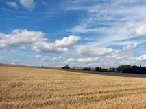 Rural landscape. In mid summer on a sunny day Stock Photo