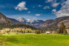 Rural Landscape With Mountain Near Bohinj-Slovenia Royalty Free Stock Photos