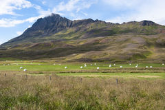 Rural landscape with mountains, field and haystacks, Iceland Stock Images
