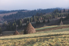 Rural landscape in the mountains. Haystacks dry hay in the field Royalty Free Stock Photo