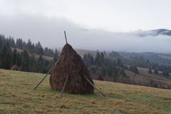 Rural landscape in the mountains. Haystacks dry hay in the field Stock Image