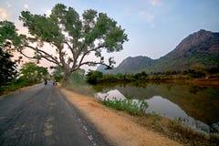 Rural landscape near bankura west bengal