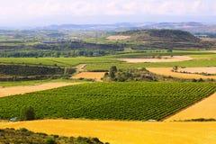 Rural  landscape  near Haro Stock Images