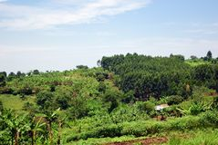 Uganda rural landscape, Africa Royalty Free Stock Photos