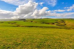 Rural landscape near Slope Point, New Zealand stock images