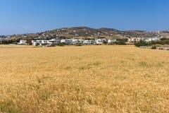 Rural landscape near town of Parikia, Paros island, Greece Stock Image