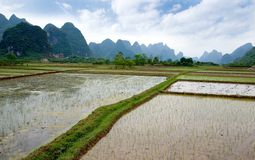 Rural landscape near Yangshuo Royalty Free Stock Image