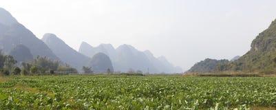 Rural landscape near Yangshuo, China Stock Photography