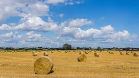 Rural landscape near Ystad stock photo