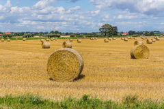 Rural landscape near Ystad Royalty Free Stock Photography