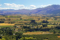 Rural landscape in New Zealand Stock Photography