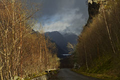 Rural landscape in norway - evening scene Royalty Free Stock Photo