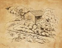 Rural landscape with old farmhouse. Hand drawing illustration Royalty Free Stock Images