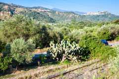 Rural landscape with old rail road in Sicily Royalty Free Stock Photography