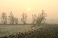 Free Rural Landscape On A Foggy Autumn Morning Rural Landscape With Silhouettes Of Trees In A Field Next To A Dirt Road In Misty Stock Photography - 139266812