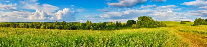 Rural landscape. Panorama Royalty Free Stock Images