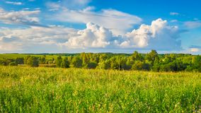 Rural landscape. Panorama Stock Photos