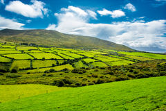 Rural Landscape With Pastures In Ireland stock photography