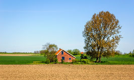 Rural landscape with a plowed field in the spring season. On the field is a big tree and a typical brick house with blue painted windows Stock Images