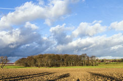 Rural landscape with plowed fields and blue sky Stock Photography