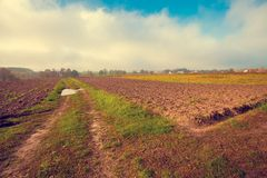 Rural landscape with plowed fields Royalty Free Stock Image