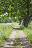 Rural landscape road Royalty Free Stock Photos