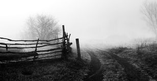 Rural landscape with road and fence. Wooden fence and tree in fog. Spring morning. Loneliness, sad mood. Black and white photo Royalty Free Stock Image