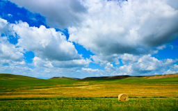 Rural landscape, Rolling haystack, Montana Stock Photo
