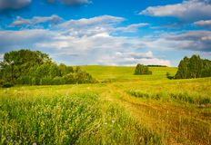 Rural landscape. Russia Royalty Free Stock Image