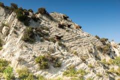 Rural landscape of Sithonia peninsula, Chalkidiki, Central Macedonia, Greece. Amazing rural landscape of Sithonia peninsula, Chalkidiki, Central Macedonia royalty free stock photo