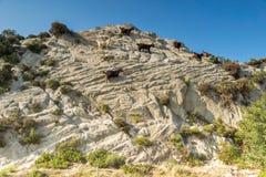 Rural landscape of Sithonia peninsula, Chalkidiki, Central Macedonia, Greece. Amazing rural landscape of Sithonia peninsula, Chalkidiki, Central Macedonia royalty free stock image
