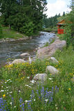 Rural landscape. Small river Stock Photography