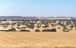 Rural landscape of southern Spain Stock Photo