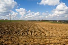 Rural landscape. Spring landscape. Arable land and blue sky Royalty Free Stock Images