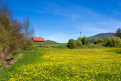 Country spring landscape Stock Images