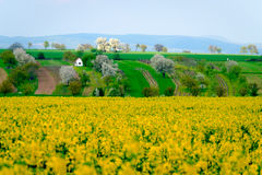 Rural landscape at spring at South Moravia Royalty Free Stock Images