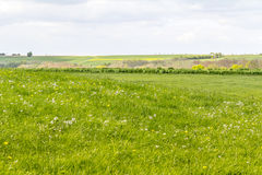 Rural landscape at spring time Stock Photo