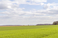 Rural landscape at spring time Royalty Free Stock Photography