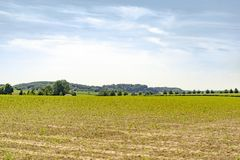 Rural landscape at spring time Royalty Free Stock Images