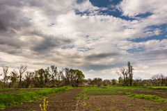 Rural landscape in spring. View of the countryside in the early spring Royalty Free Stock Photos