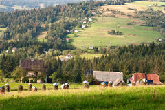 Rural Landscape with stacks of mown hay against the background of mountains Western Carpathians Stock Image