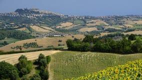 Summer landscape near Monterubbiano Fermo, Marches Royalty Free Stock Photography
