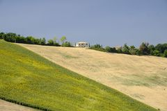 Summer landscape near Monterubbiano Fermo, Marches Royalty Free Stock Images