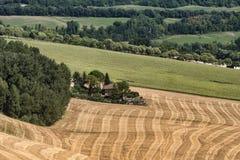 Summer landscape near Monterubbiano Fermo, Marches Stock Photo
