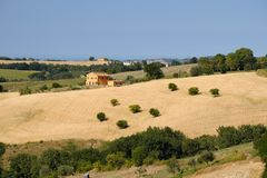 Summer landscape in Marches near Fossombrone Royalty Free Stock Photography
