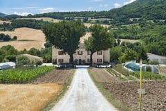 Summer landscape in Marches near Urbino Stock Photos