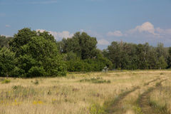 Rural landscape in summer day Royalty Free Stock Photos